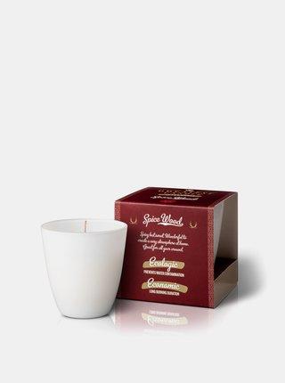 Vonná svíčka ve skle - dřevo a koření 130 g The Greatest Candle In The World