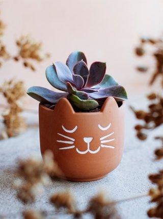 Hnědý keramický květináč Sass & Belle