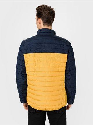 Žltá pánska bunda GAP