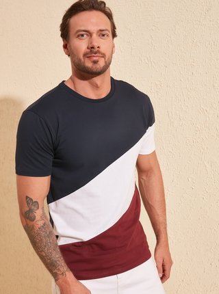 Bielo-modré pánske tričko Trendyol