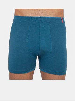 Pánské boxerky Andrie světle modré