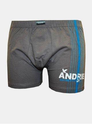 Pánské boxerky Andrie šedé