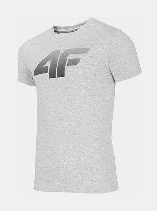 Pánské bavlněné tričko 4F TSM302  Šedá
