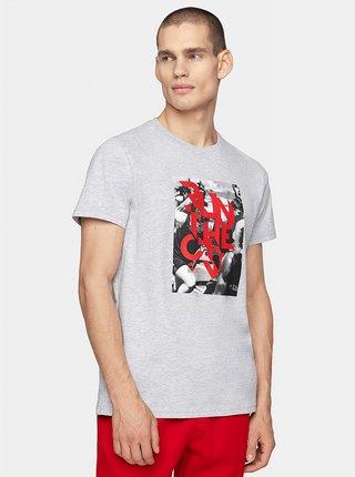 Pánské tričko 4F TSM260  Šedá