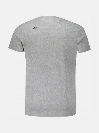 Pánské tričko 4F TSM248 Šedá žíhaná
