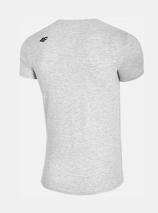 Pánské tričko 4F TSM304  Šedá