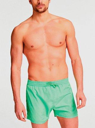 Pánské plavkové šortky F02T25WO02O-LIFL zelená - Guess zelená