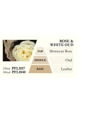 Náplň do katalytické lampy ROSE & WHITE OUD (růže a bílý oud), 500 ml