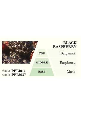 Náplň do katalytické lampy BLACK RASPBERRY (ostružina), 500 ml