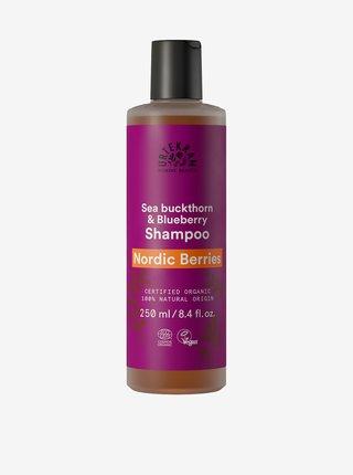 Šampon Nordic Berries na poškozené vlasy BIO Urtekram (250 ml)