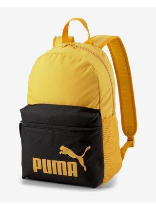 Phase Batoh Puma