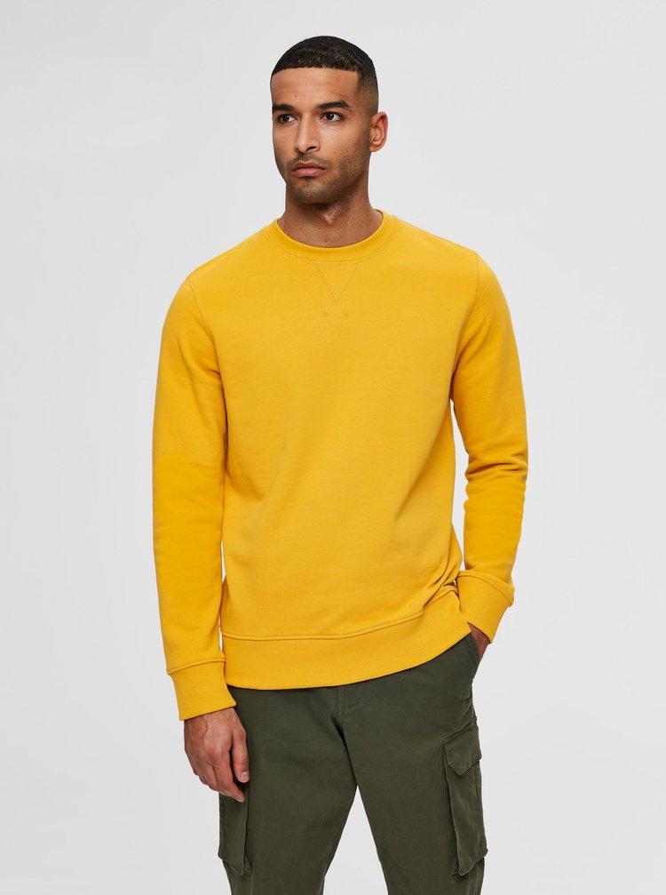 Žlutá basic mikina Selected Homme Jason